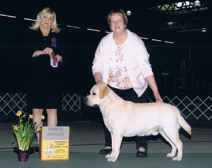 Tango takes Winner Dog and Best of Opposite at Providence County Kennel Dog Show April 15, 2011